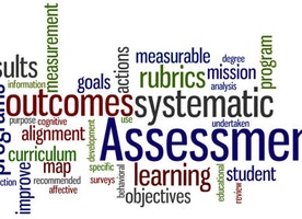 Local Disciplinary Assessment