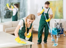 Luxury Cleaners In SW7-Chalcot Cleaners