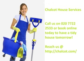 Professional cleaning company in West End