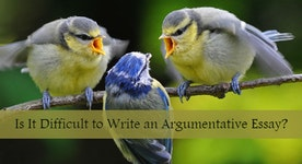 The Ideal Argumentative Essay Topics for College