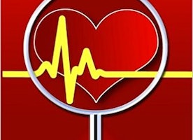 Women And Heart Disease: Book Details Proactive Steps Toward Optimal Heart Health