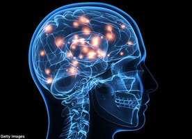 4 Perfect Ways of Enhancing the Human Brain