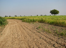Mee Bhoomi AP Land Records Adangal Download