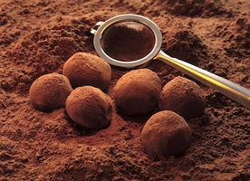 Things you need to know about Chocolate