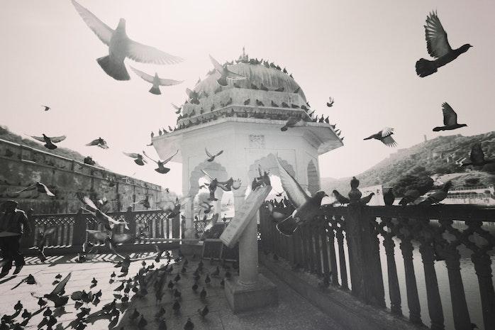 PALACES OF RAJASTHAN…