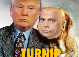 Turnip and Mooch: A Film All about Love Between a Man and His Dog...or Communications Director.