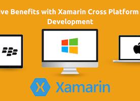 Xamarin Development: Blending Native Traits into Cross Platform Apps