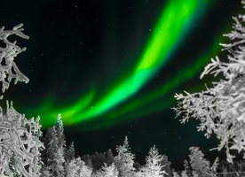 Aurora Borealis & Aurora Australis: Everything about Polar Lights