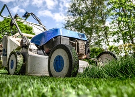 How to Maintain a Garden at Home