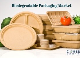 Global biodegradable packaging market to surpass us$ 21 billion by 2025