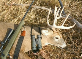 How to Master the Thrill of Deer Hunting