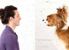 Dog Buns: WAY Cuter than Man Buns