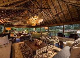 Top 5 Sabi Sands Lodges in South Africa