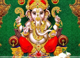 ASTROLOGER IN LUDHIANA ║+91-8146176661 Love probleM SoLuTioN Baba Ji In Ludhiana