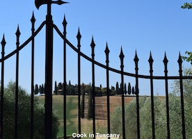 Love looking at this villa thru this gate.  #Gladiator