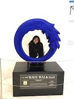 Meet Your Engagement Editor at the University of Illinois: Ami Nakrani
