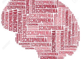 Schizophrenia: Have you got it wrong?