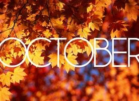 Happy October everyone🍁🎃