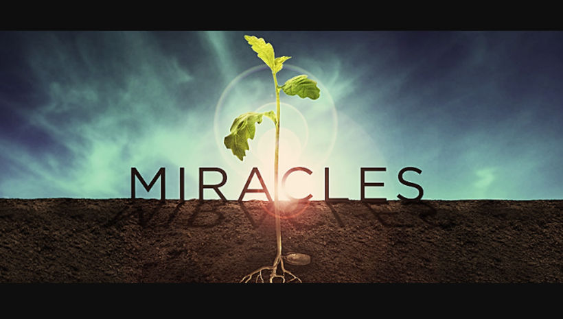 Clue for manifesting everyday miracles on your day after day lifestyles