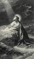 To Pray Like Jesus