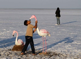 Little Rann of Kutch: Wild at Heart