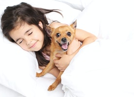 Sleeping With Your Dog: Benefits