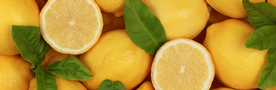 Achieve Balance with Lemon Detox