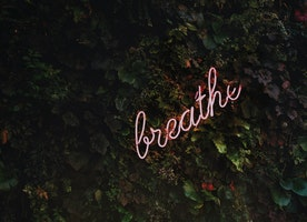 A Reminder to Breathe