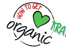 Why Organic Traffic Is So Important For every Business
