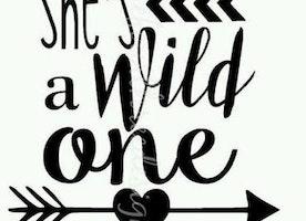 'The wild ones'