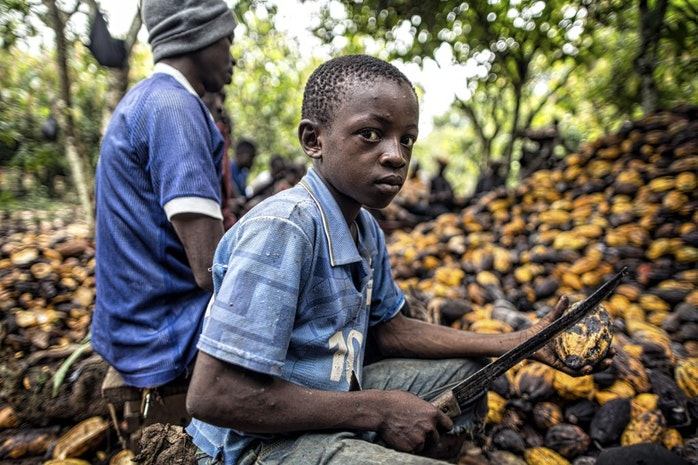 Your Hershey's Chocolate Bar Was Made by Child Slaves