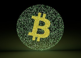 Why and Why not to Invest in Bitcoin?