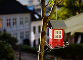 Your Quick Guide To Buying Property For Renting Out On Airbnb
