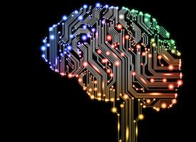 Future of Neuroscience?