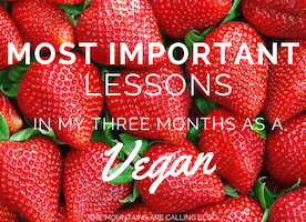 17 Important Lessons I've Learned Since Going Vegan Over 3 Months Ago