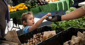Do You Think A Food Box Instead Of Snap Benefits Is A Good Idea?