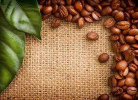 About The Coffee Bean and the Coffee Cherry