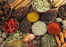 Essentials of Holistic Health