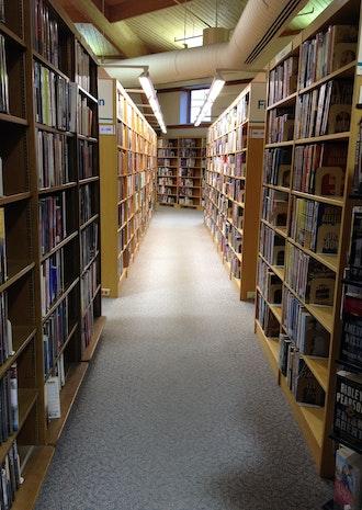 The Julia Boyer Reinstein Library [Documenting Libraries]