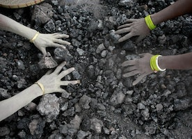 New research digs into the mysterious origins of coal