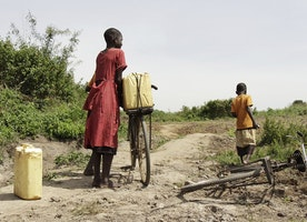 Drought is devastating both people and animals in Kenya