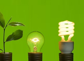 Businesses and environmental sustainability - positive initiatives