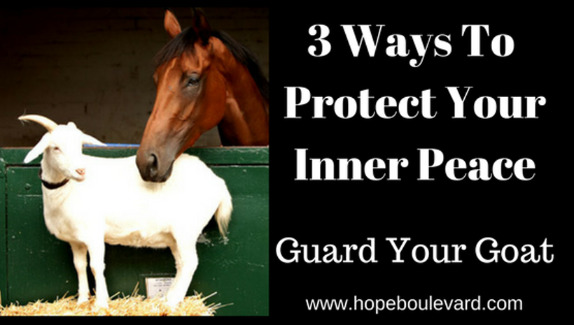 3 Ways To Protect Your Inner Peace - Guard Your Goat