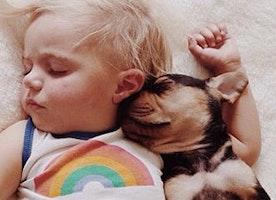 18 Adorable Photos of a Toddler Napping with his Puppy Theo