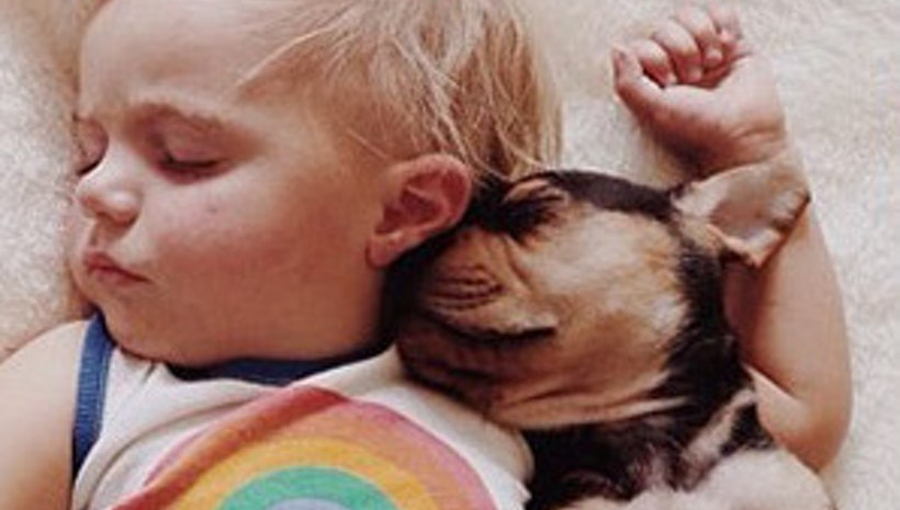 Adorable Photos Of A Toddler Napping With His Puppy Theo Mogul - Toddler naps with puppy