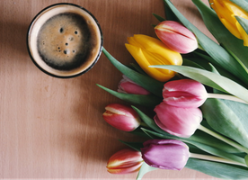 Coffee Concerns: Q&A With Dr. Ehsan Ali, Concierge Doctor to the Stars!