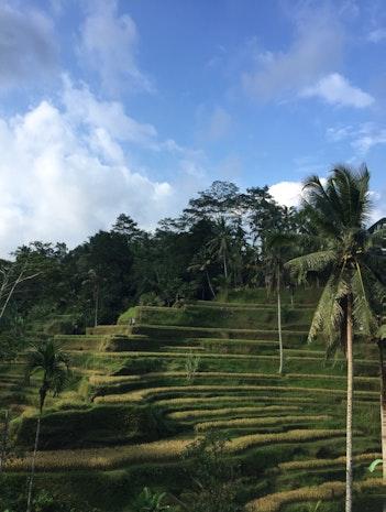 My Trip! Bali