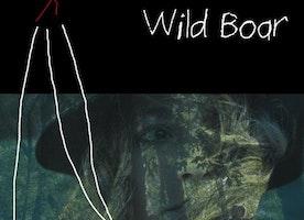 Night Of The Wild Boar