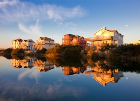 Binoy Nazareth A Tryst with Nature at Outer Banks, North Carolina
