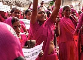 The Pink Gang Rebellion